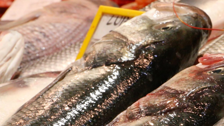 Pescado fresco con Catering Marc Fosh