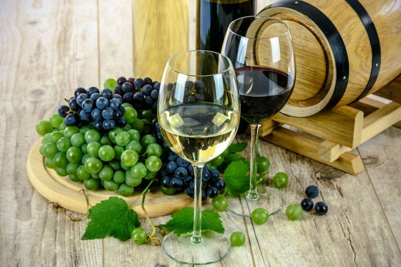 Wine Pop Up Dinner con Fosh Catering Mallorca